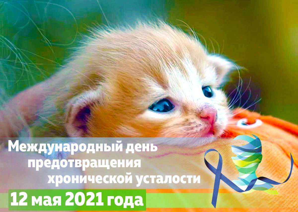 12 мая 2021 года - Международный день предотвращения хронической усталости.